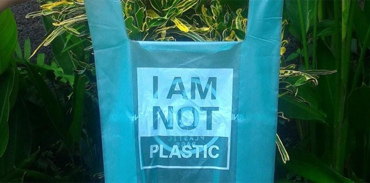 Día mundial del medio ambiente: bolsas biodegradables de yuca